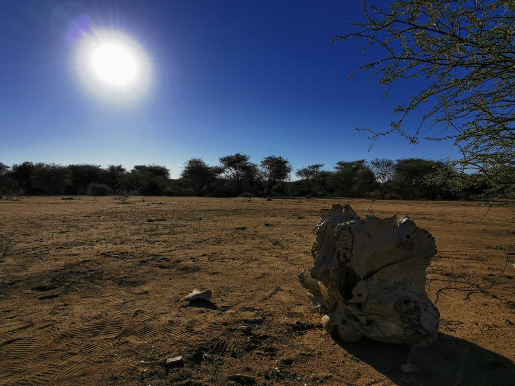 Objevte neobjevenou Namibii