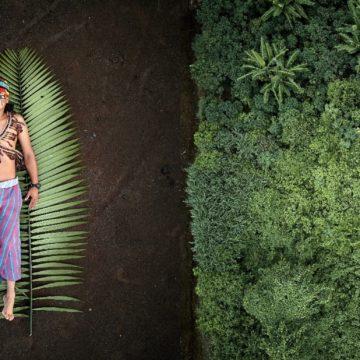 Vítězové letošního ročníku Sony World Photography Awards